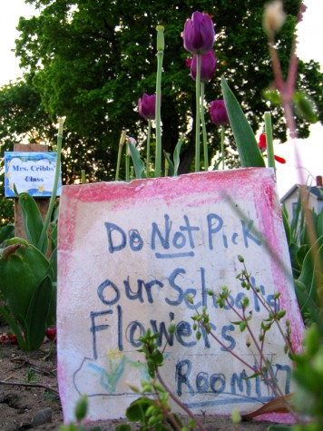 An admonition from the gardeners at Isabella and Terrace on May 20, 2008